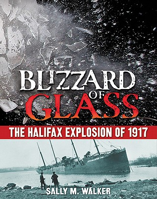 Blizzard of Glass By Walker, Sally M.